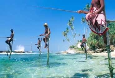 Fishing Asia ocean Sri Lanka Ahangama sea fisherman stilt tradition culture beach sand water indian ocean horizontal Color All orientations People Work
